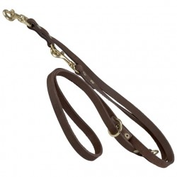 Double leather leash (two carabines)